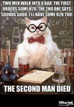 science cat  #because_science #science #scientist #universe #meme #funny #jokes