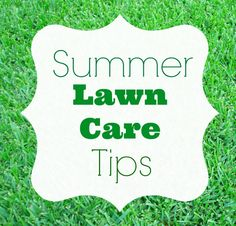 Having trouble keeping your lawn lush and green? Use these tips to improve your lawn: http://blog.homes.com/2013/07/summer-lawn-care-tips/