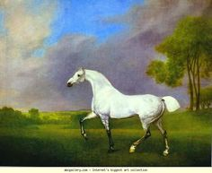 George Stubbs - A Grey Horse