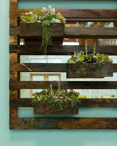 Alba's love of nature and sustainable decor is highlighted in the dining area's vertical succulent garden, which was made with reclaimed wood from shipping pallets.