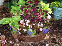 Container Gardening � Ideas for Hanging Flower Baskets, Garden Pots and Planters