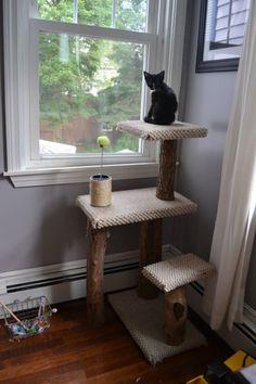 DIY Cat Scratching Post.