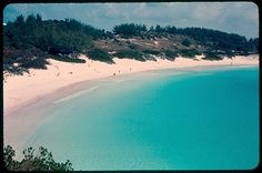 Horseshoe Bay Bermuda...it was The Most Beautiful Beach I ever had the pleasure of visiting.