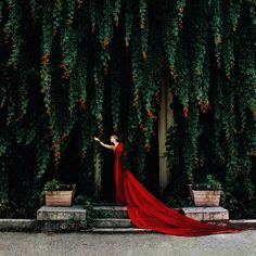 secret gardens, red, color, green, dress fashion, dresses, fairy tales, gown, fashion photography