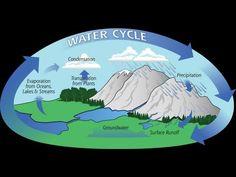 ▶ Water Cycle - Bill Nye