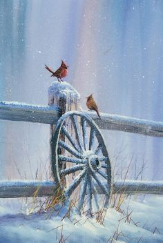Winter Cardinals from Jerry Yarnell