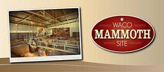 Waco Mammoth Site - Waco, Texas