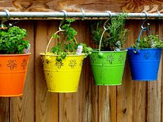 bucket planters along a fence great for my herbs and hang them along my outside window of my 4 season porch!