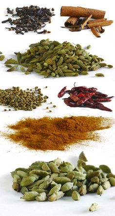 Spices for the Garam-Masala