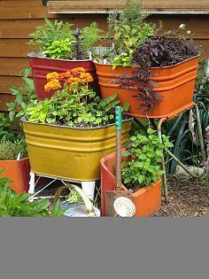 Hometalk :: Herb Garden Ideas :: The Seasoned Homemaker's clipboard on Hometalk