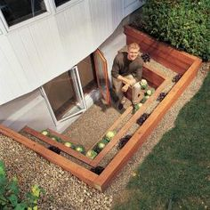 Love these!! Bring a flood of light into a dreary basement with a terraced window well. You also get an emergency escape route, planting beds and a view. Build this well as part of an egress window project or simply landscape an existing window well. Love! & I actually need to do this to 2 basement windows!!!