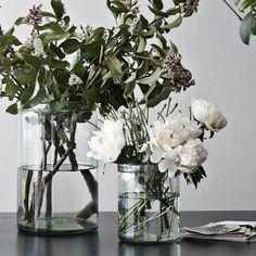 Glass Cylinder Vases for flower arrangements.