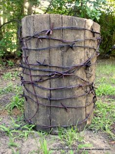 Barbed Wire On Pinterest 175 Pins