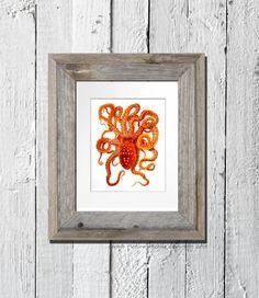 Wall Art Red Orange Octopus Print No.6 Sea Life Ocean Animals Art Dorm Beach Coastal Nautical Bedroom Home Decor 8x10 GnosisPictureArchive