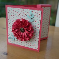 chrystanthemum flower, gift cards