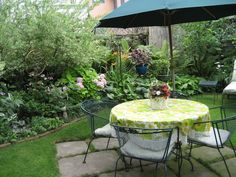 Stunning Back Yard Garden