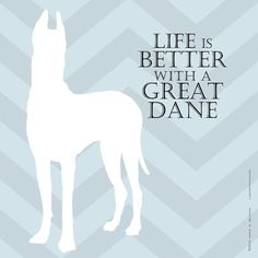Life is always better with a GREAT dane, right?
