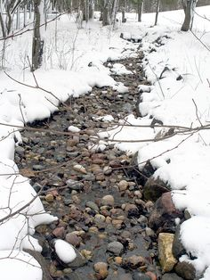 winter stream...