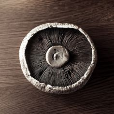 #Wood and #mushroom