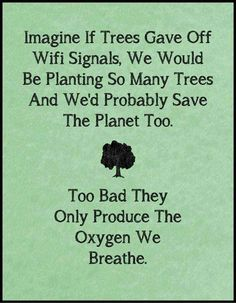 Imagine if trees gave off WIFI signal, we would be planting so many trees and we's probably save the planet too.   #weekendthought #motherearth #weekend