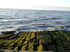 sea wall, no more
