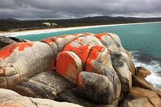 The beautifully contrasting Bay of Fires in Tassie. Photo courtesy of Jo Unger, wife of Dr. Isadore Unger.  Read more here:  www.gmedical.com/newsletter/unger