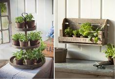 Indoor herb garden :)