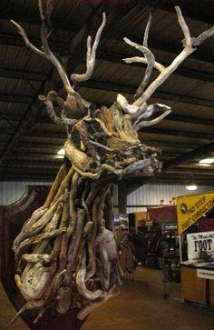 Driftwood buck