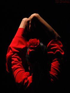 """El Flamenco, en palabras de Igor Stravinsky, """"es un arte de composición"""","""