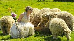 lincoln longwool, wedding dressses, weddings, brides, the dress