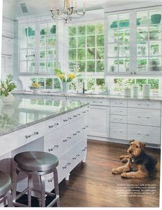 Glass cabinets over windows.