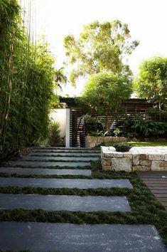 Lush modern garden