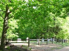 King Family Cemetery  Raleigh  Wake County  North Carolina  USA