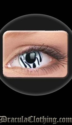 zebra contact lenses