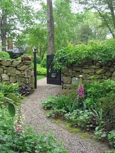 beautiful entrance to a garden - stone walls & pea gravel path - lots of shade plants <3