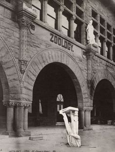 San Francisco Earthquake, May 1906