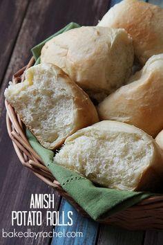 Amish Potato Rolls Recipe from bakedbyrachel.com