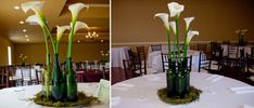 calla lilies, simple centerpieces, wine parties, themed weddings, wedding planners, wine bottles, wedding centerpieces, flower, calla lillies