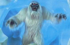 Y is for Yeti