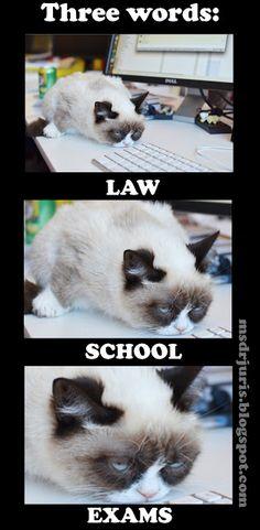 Law school exams.