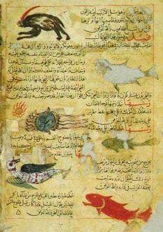 A 14th-century AD manuscript of Zakariya ibn Muhammad al-Qazwini's Aja'ib al-makhluqat (The Wonders of Creation). Or. 14140. Copyright © The British Library Board.