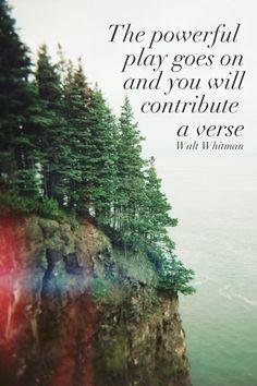 music & lyrics & words: Quote: Walt Whitman