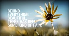behind everything beautiful there has been some kind of pain.