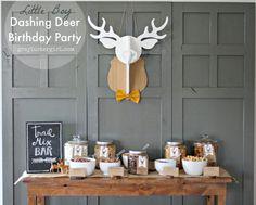 Little Boy 2nd Birthday Dashing Deer Party