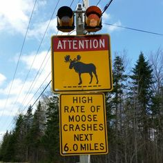 Moosehead Lake, Maine... please pay attention because this sign is for real.