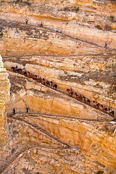 Bright Angel Trail Switchback, Grand Canyon National Park, Arizona | Tom Brownold,