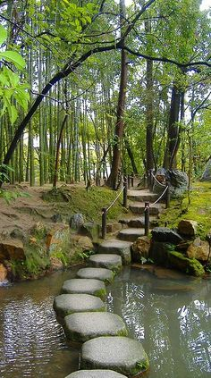 Stepping stones ~ Tenjuan Gardens ~ Kyoto, Japan • photo: Sharilyn Anderson •