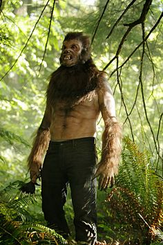 What kind of Wesen is this?  Doesn't look like the typical Blutbad.  Is this even from #Grimm?