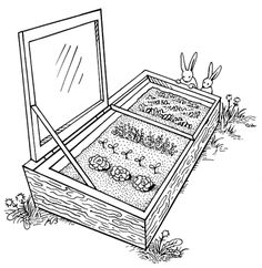 Build a cold frame to extend your growing season.