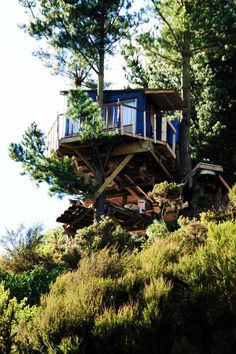 modern house design, outdoor baths, rustic houses, tree houses, green tree, treehous, dream hous, house styles, modern houses